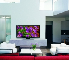 Living Room Equipped With HDTV in Boca Raton